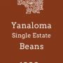 YanalomaBeans1000
