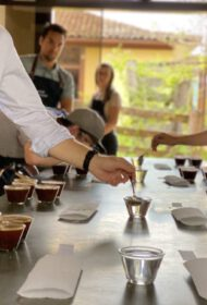 Cupping for the contest